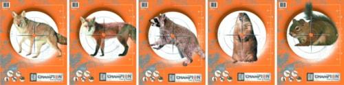 Champion Blinkskiver - 5stk
