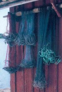 Torskegarn 27m, 40msk - Grå/transparent